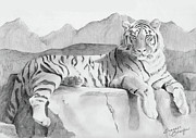Wildlife Art Drawings Posters - Endangered Species - Tiger Poster by Suzanne Schaefer