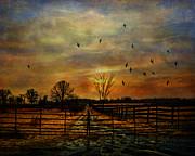 Ending Autumn Print by Pamela Phelps