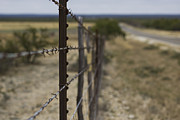 Barbed Wire Fences Framed Prints - Endless Framed Print by Amber Kresge
