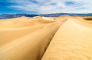Large Sand Dunes Prints - Endless Dunes - Panoramic view of sand dunes in Death Valley National Park Print by Jamie Pham