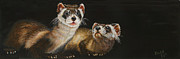 Ferrets Prints - Energetic Pair Print by Beth Gramith