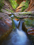 West Fork Oak Creek Canyon Posters - Energy Poster by Peter Coskun