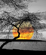 English Bay Sunset Print by Brian Chase