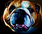 Cute Dogs Digital Art Prints - English Bulldog - Electric Print by Wingsdomain Art and Photography