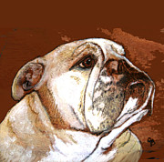 Pet Dog Pyrography Framed Prints - English Bulldog  Framed Print by Jeanie Beline