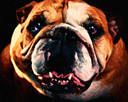 Puppies Digital Art Metal Prints - English Bulldog - Painterly Metal Print by Wingsdomain Art and Photography