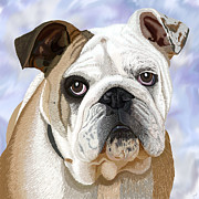 English Bulldog Portrait Print by Jacqueline Barden