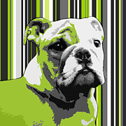 Dog Abstract Art Print Framed Prints - English Bulldog Puppy Abstract Framed Print by Natalie Kinnear