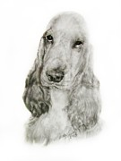 English Cocker Spaniel Posters - English Cocker Poster by Linda Zielinski