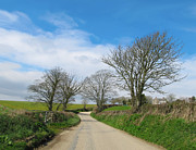Dusty Road Posters - English Country Road in Cornwall Poster by Kiril Stanchev