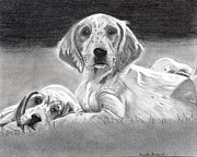 Puppies Drawings Framed Prints - English Setter Puppies Dog Framed Print by Olde Time  Mercantile
