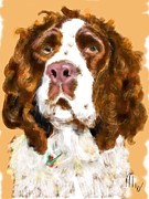 Lois Ivancin Tavaf - English Springer