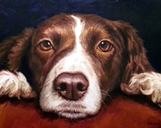English Springer Spaniel Resting On Dark Red Print by Dottie Dracos