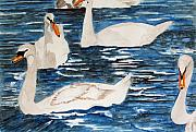 Larry Wright - English Swan In The...