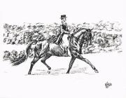 Dressage Drawings - Enjoying Dressage by Joann Renner