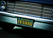 Entourage Framed Prints - Entourage Framed Print by Darin Mangan