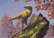 Alertness Digital Art - Eosinopteryx Brevipenna Perched by Emily Willoughby