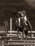Horse Art Photographs Posters - Equestrian Balance Poster by Skip Willits