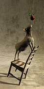 Goat Digital Art Metal Prints - Equilibrium Metal Print by Cynthia Decker