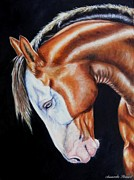 Mustang Paintings - Equine Elegance by Amanda  Stewart