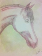 Animals Drawings - Equine Head in pencils by Abbie Shores
