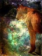 Cliff Acrylic Prints - Equine Illumination by Leah Moore