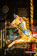 Galloper Prints - Equine nostalgia - horse on a Victorian carousel Print by David Hill