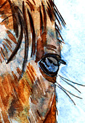 Horse Training Art Prints - Equine Reflection Print by Elizabeth Briggs