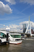 Boat Cruise Photo Prints - Erasmus Bridge in Rotterdam City Downtown Print by Artur Bogacki
