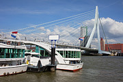 Boat Cruise Photo Posters - Erasmus Bridge in Rotterdam Downtown Poster by Artur Bogacki