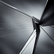 Suspension Bridge Metal Prints - Erasmusbrug Metal Print by David Bowman
