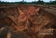 Martin Harvey - Erosion In Cleared Rainforest