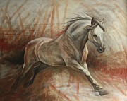 White Horses Painting Framed Prints - Escape Framed Print by Silvana Gabudean