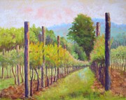 Nancy Jolley - Estate Pinot