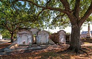 Metairie Cemetery Prints - Eternal Shade Print by Steve Harrington
