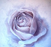 Sandra Phryce-Jones - Ethereal Rose