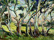 Australian Wines Prints - Eucalypts in Jacobs Creek Print by Zofia  Kijak