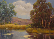 Maralyn Miller - Eucalyptus Reflections