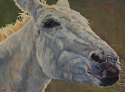 Donkey Originals - Eunice by Patricia A Griffin