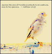 Even Sparrows Matter Print by Kathy Barney