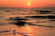 Florida Panhandle Prints - Evening Beach Stroll Print by Adam Jewell