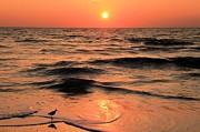 Adam Jewell - Evening Beach Stroll