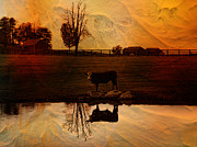 Barns Digital Art - Evening Cloak by Pamela Phelps