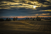 Agriculture Art - Evening Countryside by Erik Brede