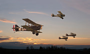 Biplane Prints - Evening Flight Print by Pat Speirs