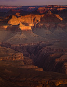 South Rim Framed Prints - Evening in the Canyon Framed Print by Andrew Soundarajan