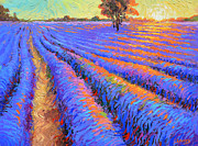 Dmitry Spiros - Evening lavender field