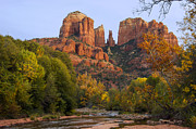 Red Rock Crossing Framed Prints - Evening Light on Cathedral Rock Framed Print by Bob Phillips