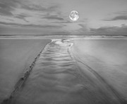 Roy Mcpeak Metal Prints - Evening Moon Metal Print by Roy McPeak
