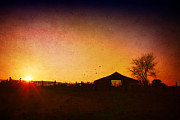 Farming Barns Prints - Evening on the Farm Print by Darren Fisher